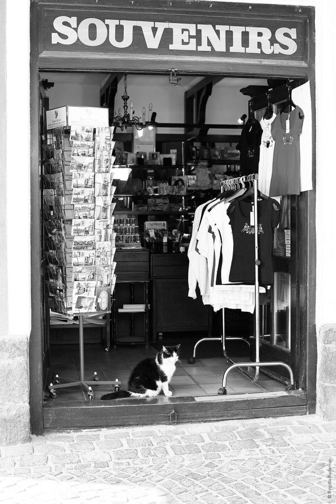 street_20130823_souvenir
