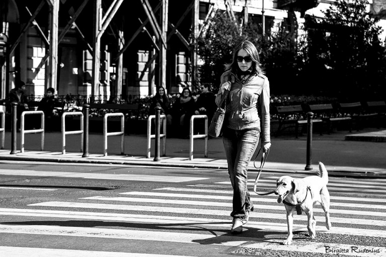 PiPP_20150321_dogwalk