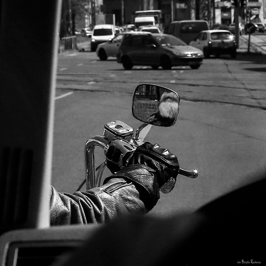 PiPP_20150429_bikersbeard