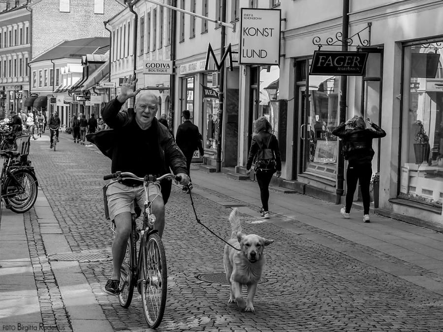 PiPP_20150710_bikerdog