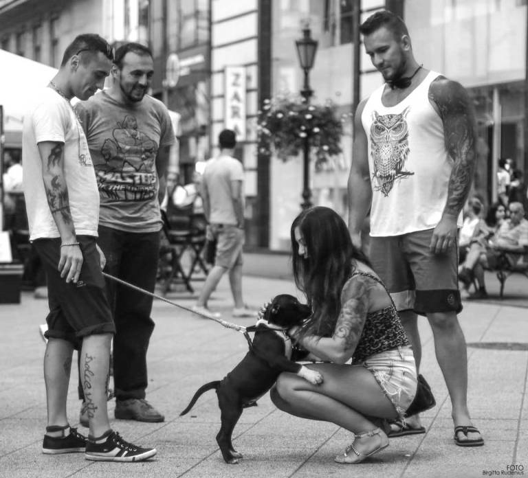 Street Photography - Puppy & Tattoo